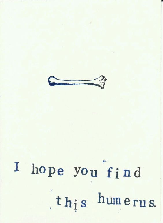 Tibia-honest-I'll-patella-when-1-find-something-femur-humerus